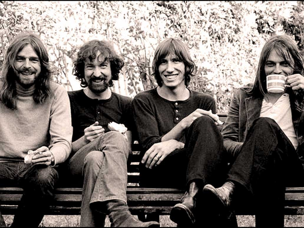 New Insect Named After Pink Floyd Album 100 7 San Diego